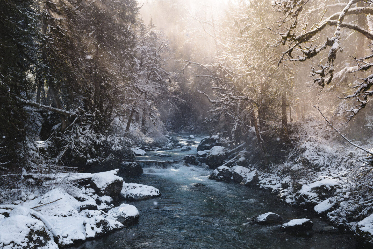 A snowy scene along a river near Chilliwack.